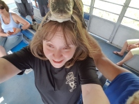 Alligator on da head